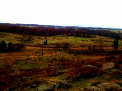 Little Round Top view of Pitzer Woods